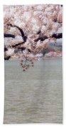 Cherry Tree And The Potomac Beach Towel