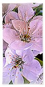 Cherry Tree Blossoms Beach Towel