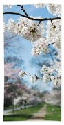 Cherry Trees Beach Towel