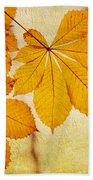 Chestnut Leaves At Autumn Beach Towel