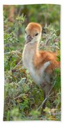 Chick 107 Beach Towel