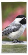 Chickadee Song Beach Towel