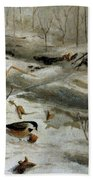 Chickadees Beach Towel