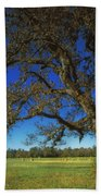 Chickamauga Battlefield Beach Towel by Mountain Dreams