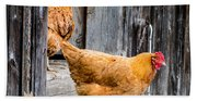 Chickens At The Barn Beach Towel