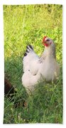 Chickens In Tall Grass Beach Towel