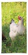 Chickens In Tall Grass Beach Sheet