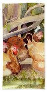 Chickens In The Hedge II Beach Towel