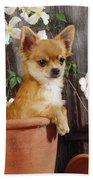 Chihuahua Dog In Flowerpot Beach Towel