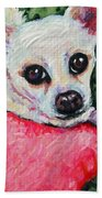 Chihuahua Who Came To Visit Beach Towel