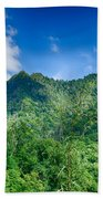 Chimney Tops Mountain In Great Smoky Mountains  Beach Towel