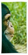 Chimpanzee Profile Beach Towel