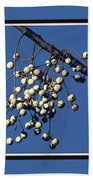 China Berry Cluster Beach Towel