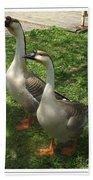 Chinese Swan Goose Pair 2 Beach Towel