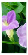 Chinese Violet  1 Beach Towel