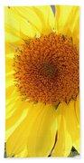 Chipmunk's Peredovik Sunflower Beach Towel
