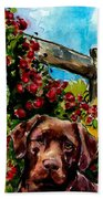 Chocolate Raspberry Fields Beach Towel by Molly Poole