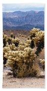 Cholla Cactus Garden Beach Towel