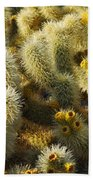 Cholla Cactus Garden Mirage Beach Towel
