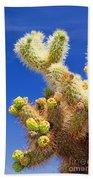 Cholla Cactus I By Diana Sainz Beach Towel