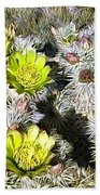 Cholla Flowers Beach Towel