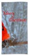 Christmas Red Cardinal Beach Towel