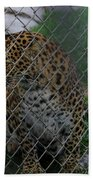 Christmas Leopard I Beach Towel