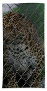 Christmas Leopard II Beach Towel