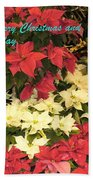 Christmas Poinsettias  Beach Towel