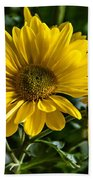 Chrysanthemum Beach Towel