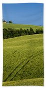 Church In The Field Beach Towel by Brian Jannsen