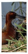 Cinnamon Teal Beach Towel