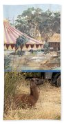 circus circus 2 - A vintage circus wagon with african paint and llama camel  Beach Towel
