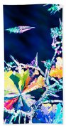 Citric Acid Microcrystals Color Abstract Art Beach Towel