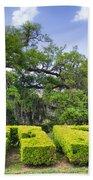 City Park New Orleans Louisiana Beach Sheet
