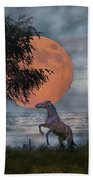 Claiming The Moon Beach Towel by Betsy Knapp