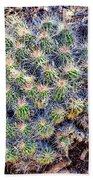 Claret Cup Cactus Beach Towel