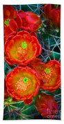 Claret Cup Beach Towel