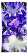 Classic Look Iris Closeup Beach Towel