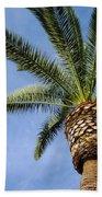 Classic Palms Beach Towel
