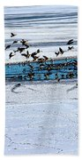 Cleared To Land Beach Towel