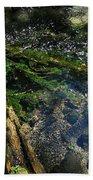 Clearwater Falls Series 17 Beach Towel