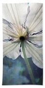 Clematis In Morning Sun Beach Towel