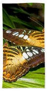 Clipper Butterflies Beach Towel