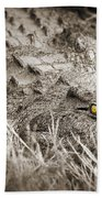 Close Crocodile  Beach Towel