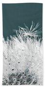 Close-up Dandelion Seeds, Prague, Czech Beach Sheet