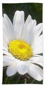 Close Up Of A Margarite Daisy Flower Beach Sheet