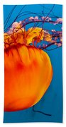 Close Up Of A Sea Nettle Jellyfis Beach Towel