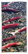 Close-up Of Fish In Water, Sockeye Beach Towel