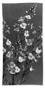 Close Up Of Gentian Speedwell Flowers Beach Sheet